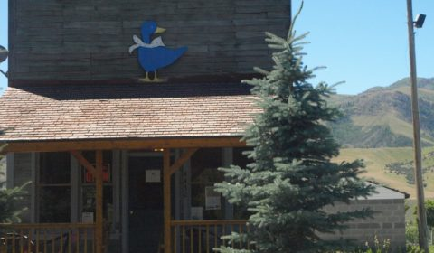 Blue Goose Saloon building